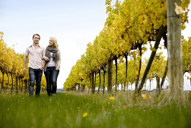 Hanging Rock Vineyard Tour